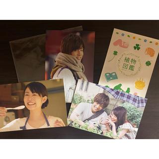 サンダイメジェイソウルブラザーズ(三代目 J Soul Brothers)の植物図鑑 運命の恋、ひろいました(日本映画)