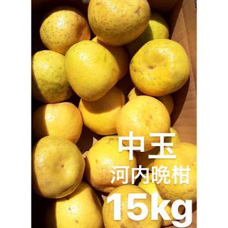 愛媛 宇和ゴールド 15Kg   河内晩柑(フルーツ)