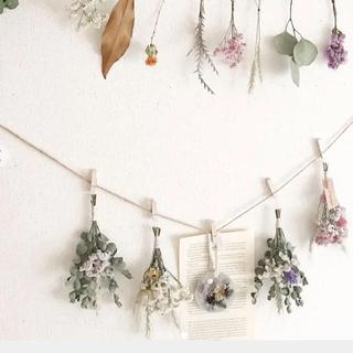 sale dried flower garland  ドライフラワーガーランド(ドライフラワー)