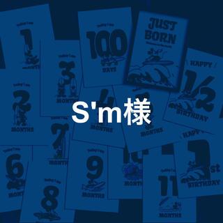 S'm様専用(その他)