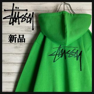 STUSSY - 【タグ付き・新品】ステューシー☆ビッグロゴ入りパーカー 超希少カラー 入手困難