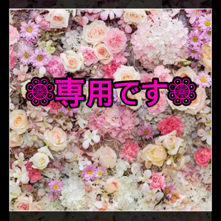 Pigeon - 【新品未開封】ピジョン 離乳食 かんたん粉末 中華風 野菜あんかけ 2箱