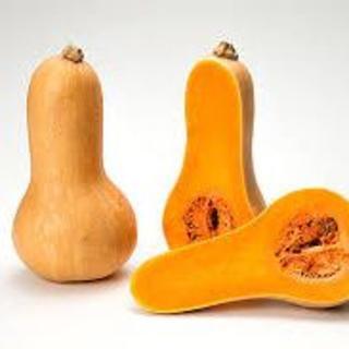 バターナッツかぼちゃ 南瓜 ひょうたんみたい形 バター風食感 ナッツ風味(野菜)