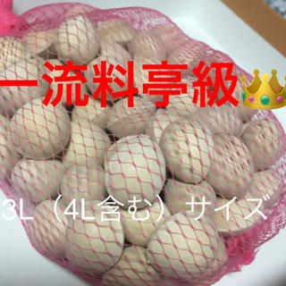 名産地愛知県産銀杏 3Lサイズ