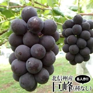 ラクマ2箱目♪ 最終品のタイムセール♪ 種なし巨峰♪ 長野県産 2kg(フルーツ)