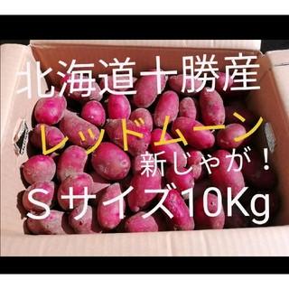 北海道十勝幕別産じゃがいも 新じゃが レッドムーン10Kg(野菜)