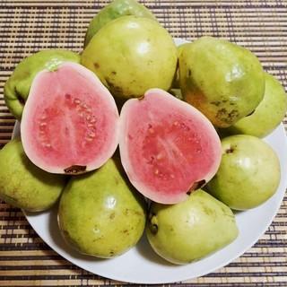 安心のクール便送料込!沖縄産グァバ 赤果肉 かわいいサイズ1kg(フルーツ)