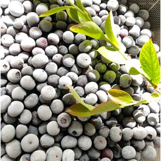 冷凍無農薬ブルーベリーミックス2キロ(フルーツ)