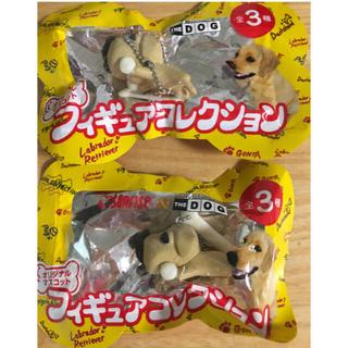 ラブラドールリトリーバー(Labrador Retriever)のThe Dog  ラブラドールレトリバー ゴン太フィギュア レア   オリジナル(犬)