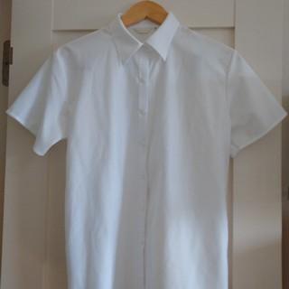 しまむら - ★お値下げ中★しまむら◆白ブラウス◆半袖◆無地◆19号◆大きいサイズ