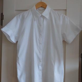 しまむら - ★お値下げ中★しまむら◆白ブラウス◆半袖◆ストライプ◆19号◆大きいサイズ