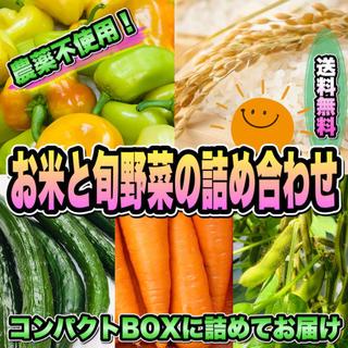 採りたて新鮮! お米と旬野菜のコンパクトセット 〜畑からの直送便〜 無農薬(野菜)