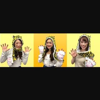 ハンシンタイガース(阪神タイガース)の阪神 タイガース 虎の手袋付きマフラー(応援グッズ)