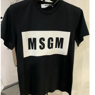 エムエスジイエム(MSGM)のMSGM ボックスロゴ 黒 Tシャツ 半袖(Tシャツ(半袖/袖なし))