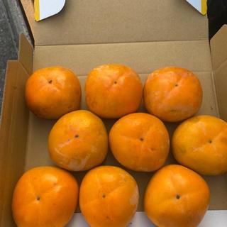 和歌山県産 柿 刀根柿(フルーツ)
