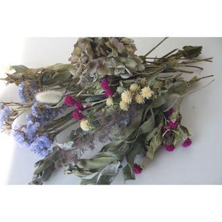 ミミィ様専用ブルー系花材D&コットンフラワーとユーカリポポラスセット(ドライフラワー)