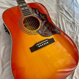エピフォン(Epiphone)のエピフォン ハミングバード トップ単板 エレアコ 美品(アコースティックギター)