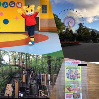 軽井沢⭐️ おもちゃ王国 入園無料券 2枚 有効期間 11/23日(遊園地/テーマパーク)