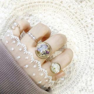 指輪セット【206】ワイヤーリング(リング)