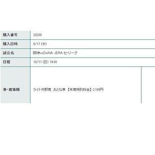 ハンシンタイガース(阪神タイガース)の10/11(日) 阪神vsDeNA ライト下段 2枚 定価(野球)