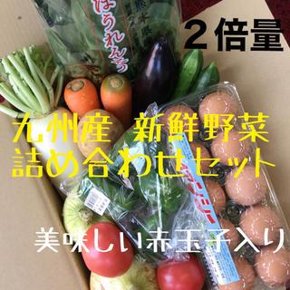 九州産 新鮮野菜 詰め合わせセット 2倍量 赤玉子入り(野菜)