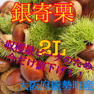栗 銀寄栗(野菜)