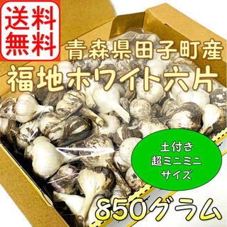 ★超ミニミニサイズ★ 2020年産 青森県田子町産にんにく 850g前後 (野菜)