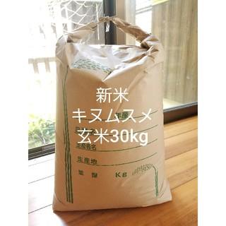 さめても美味しい❗淡路島産キヌムスメ玄米30kg、農家直送(米/穀物)