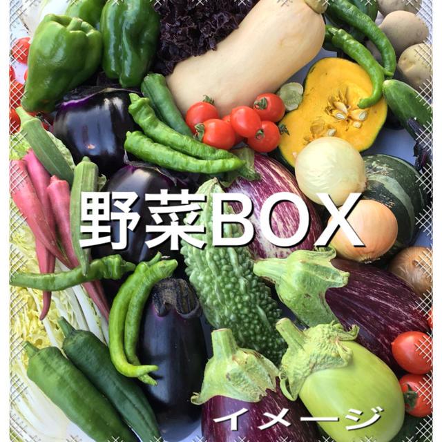 野菜BOX 2kg 食品/飲料/酒の食品(野菜)の商品写真