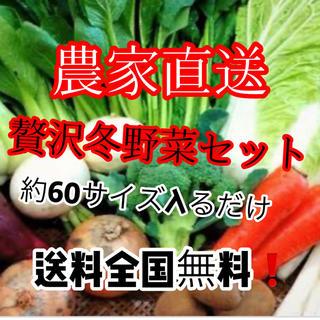 農家直送たっぷり冬野菜詰め合わせ約60サイズ入るだけ送料無料‼️(野菜)