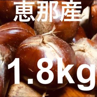 【秋の味覚】恵那  栗 2Lサイズ以上1.8㎏  無農薬(野菜)