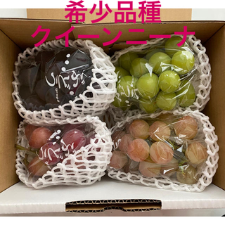シャインマスカット  ピオーネ クイーンニーナ 安芸クイーン 高級葡萄4種セット(フルーツ)