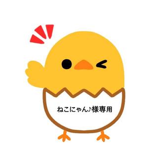 アナスイ(ANNA SUI)のインナーマスク アナスイ 黒に金ラメ(その他)