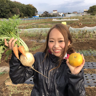 農薬・肥料不使用のお野菜セットM 8〜10品(野菜)