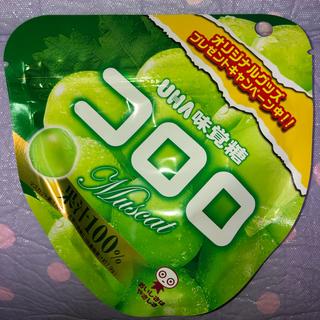 UHA味覚糖 - UHA味覚糖 コロロ マスカット⭐️