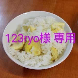123ryo様 専用(その他)