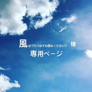 風@プロフ必ずお読みください♡ 様専用ページ(ピアス)
