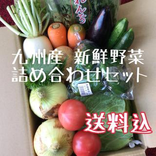 九州産 新鮮野菜 おまかせ詰め合わせセット(野菜)