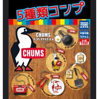 チャムス(CHUMS)のチャムス ガチャ キーホルダー コンプ(キーホルダー)