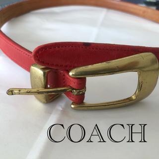 コーチ(COACH)のレディースベルト COACH(コーチ)(ベルト)