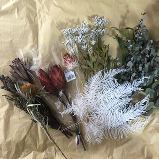ドライフラワー・ネイティブフラワー花材11種セット(ドライフラワー)