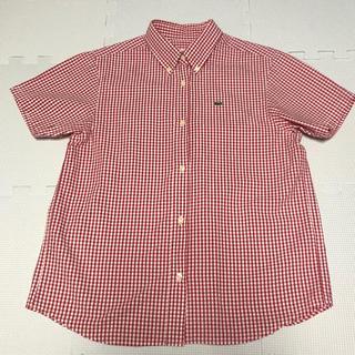 ラコステ(LACOSTE)のラコステレディースボタンダウンシャツ(シャツ/ブラウス(半袖/袖なし))