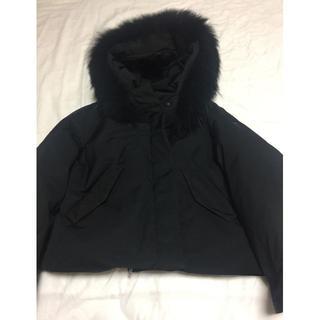 ダブルスタンダードクロージング(DOUBLE STANDARD CLOTHING)のダブルスタンダードクロージング黒ダウンジャケット(ダウンジャケット)