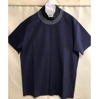 カラー(kolor)のkolor 17SS tシャツ(Tシャツ/カットソー(半袖/袖なし))