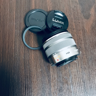 Panasonic - LUMIX G VARIO 14-42mm F3.5-5.6 II