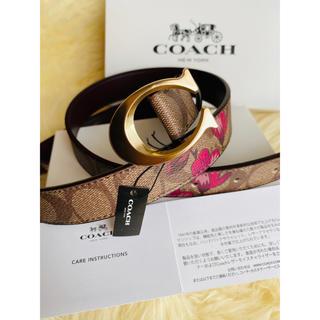 コーチ(COACH)の【COACH】コーチ人気 シグネチャーブラウン花柄 レザーベルト 新品 正規品(ベルト)