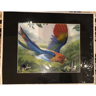 マジックザギャザリング(マジック:ザ・ギャザリング)の極楽鳥 Edward P Beard Jr アートプリント サイン入り MTG(その他)