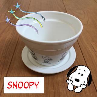 スヌーピー(SNOOPY)のスヌーピー マグカップ 小物入れ 箱 収納 アクセサリー(小物入れ)