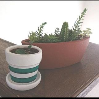 新品 プランター ボートシェイプ  ブラウン 植木鉢  2点セット(プランター)