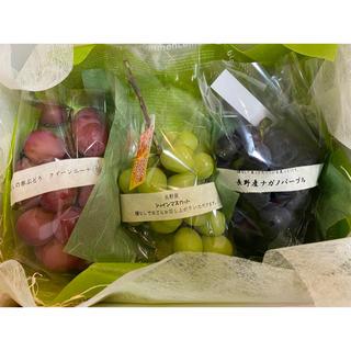 シャインマスカット  クイーンニーナ ナガノパープル 高級葡萄3種セット 贈答用(フルーツ)